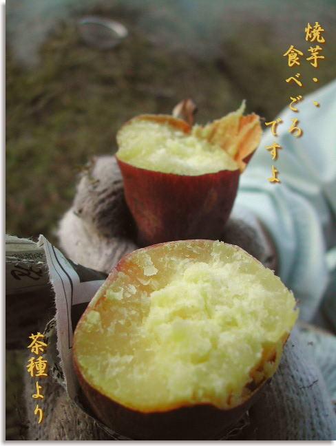 Yakiimo1