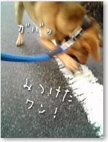 Oosouji1
