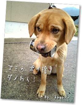 Oosouji2_2