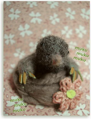 Mucku2