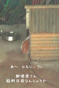 Kyuuryoubimae_2