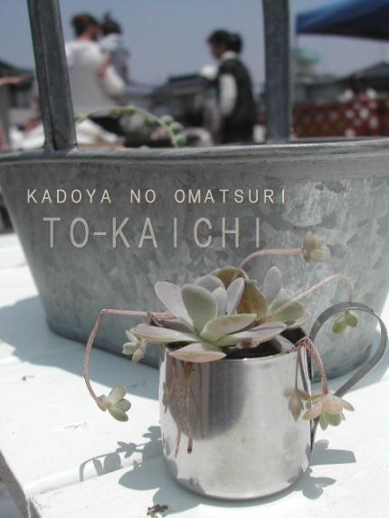 Tokaichi1
