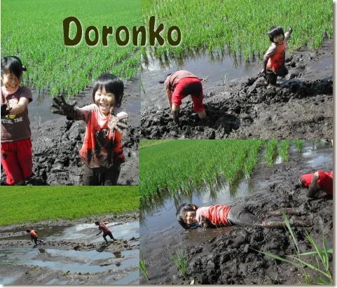 Doronko1