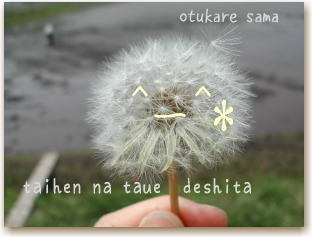 Taue4