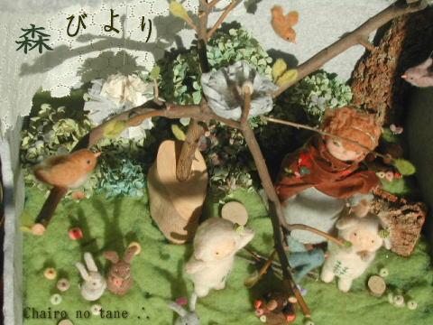 Moribiyori8