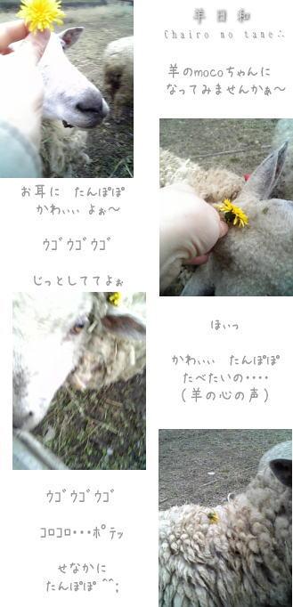 Hitujibiyori1