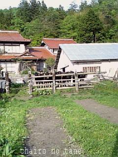 Ushikai