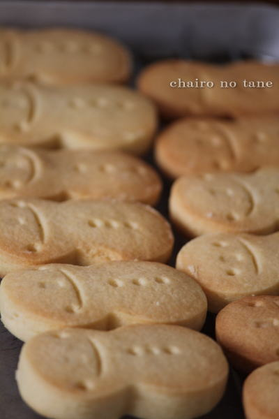 Yukidarumacookie